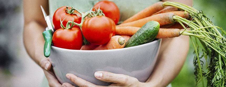 Healthy Diet for Good Vision_ cropped